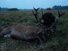 reddeer hunting in estionia