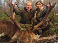 red deer hunt_estonia