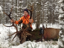 reddeer hunt in estonia 6