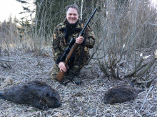beaver_hunt_estonia